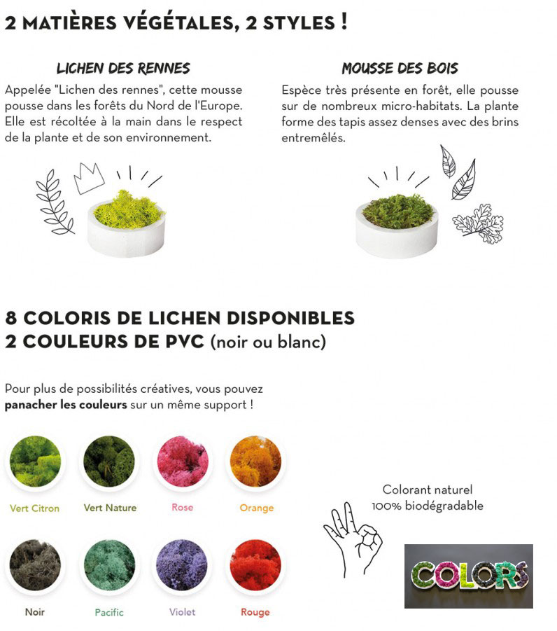 styles-vegetal-796x1024